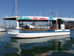 Barca a motore elettrico Raptus