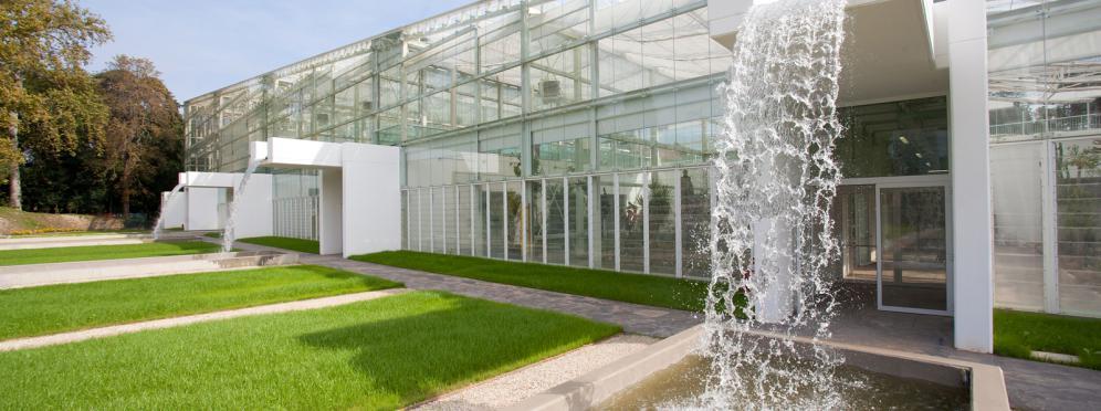 Giardino della biodiversità - Orto Botanico di Padova