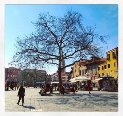 Campo Santa Margherita | Venezia