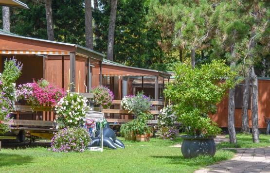 Chalet al Camping Il Tridente